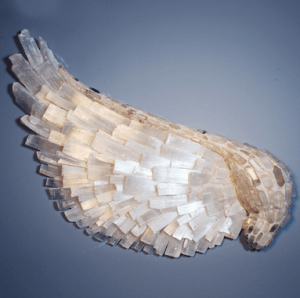Selenite Angel Wing Luxury Items Made From Crystal And Stone