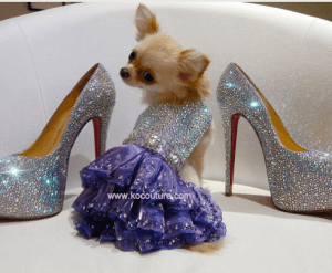 Swarovski Crystals Dog Outfit Luxury Items Made From Crystals And Stone